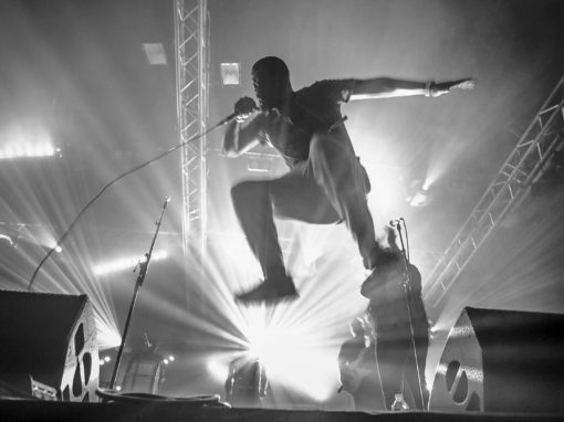 Radio Meuh <br>Circus Festival